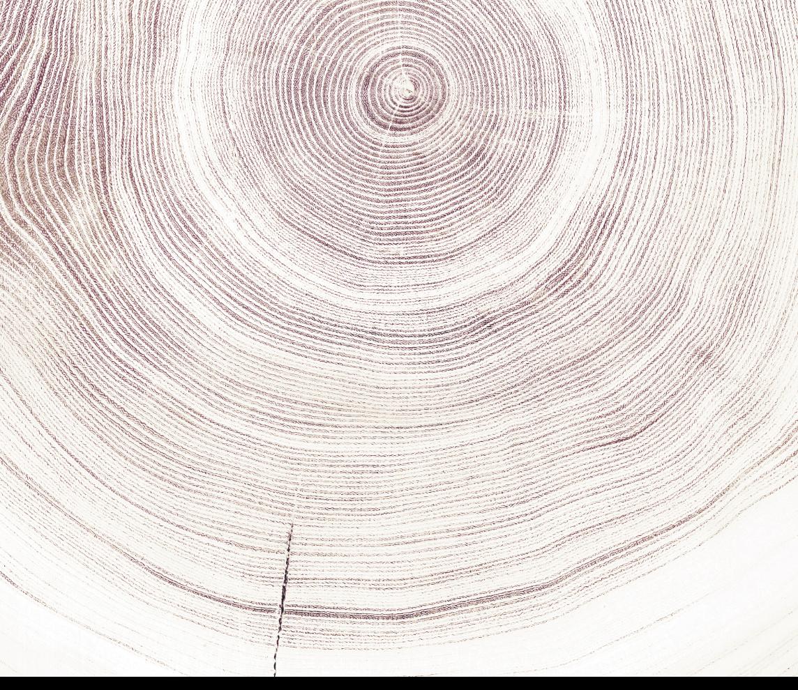 Bois coupe interieur AdobeStock